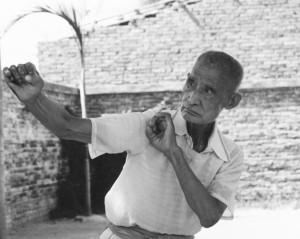 Master Wan Laisheng